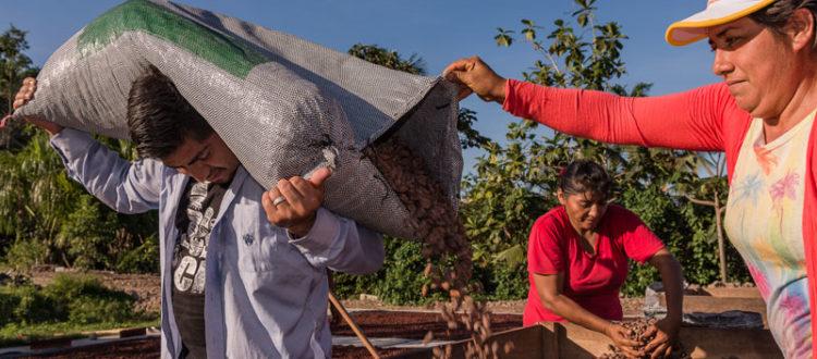 Fino al 28 ottobre tornano le Settimane Fairtrade