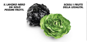 Con l'insalata Vivi Verde Coop si fa accoglienza e formazione