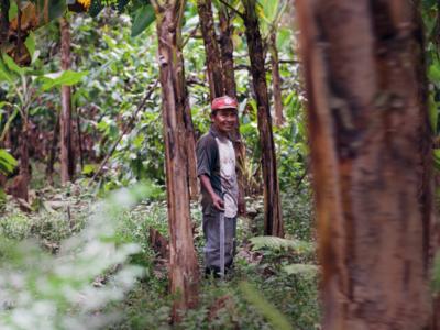 Aiutiamo l'Amazzonia sostenendo le comunità locali